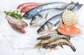 stock photo of ice fishing  - Seafood on ice at the fish market - JPG