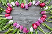 pic of gratitude  - Frame of fresh tulips arranged on old wooden background - JPG