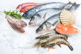 stock photo of shell-fishes  - Seafood on ice at the fish market - JPG