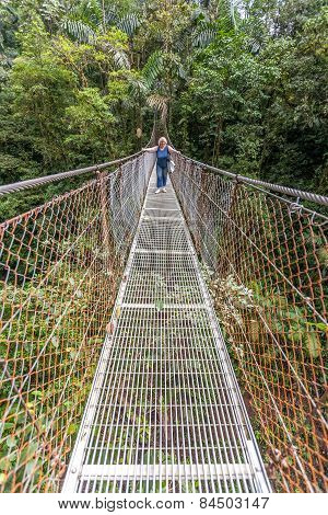 Suspension bridge in tropical rain forest of Costa Rica