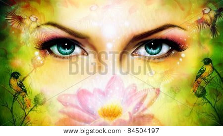 A Pair Of Beautiful Blue Women Eyes Beaming Up Enchanting From Behind A Blooming Rose Lotus Flower,