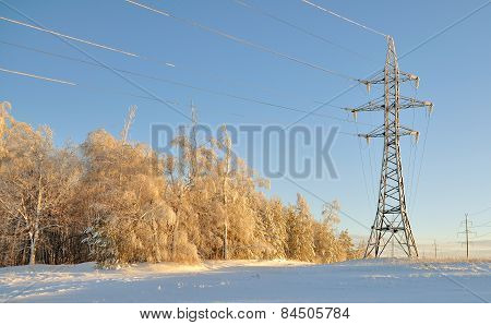 Landscape Pole And High Voltage Wires Near The Forest