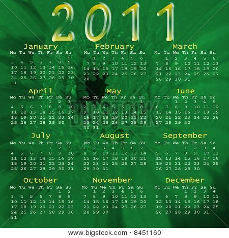 2011 Calender flower illustration