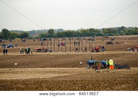 Field of Ploughing Competitors