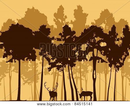 Illustration, Pine Wood And Two Deer.
