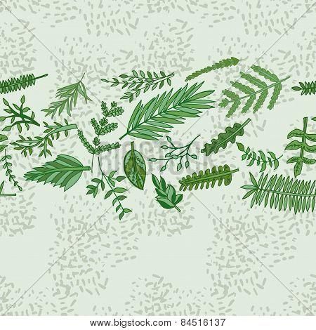 Herbal Border Pattern. Hand Drawn Vector Illustration