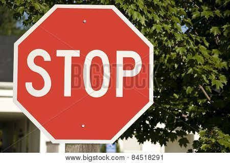 Big Bold Red STOP sign