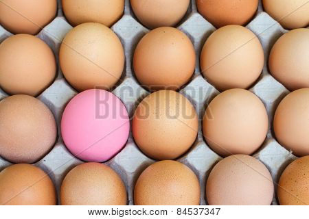 Pink preserved and fresh eggs in paper package