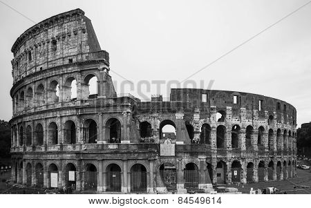 The Colosseum In Black And White