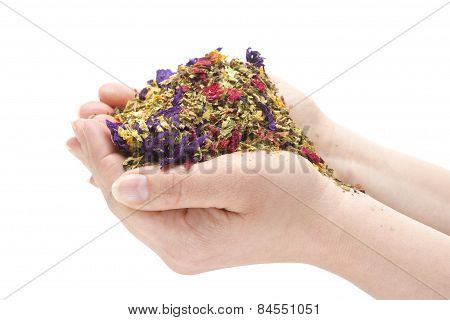 Female Hands Holding A Pile Of Herbs