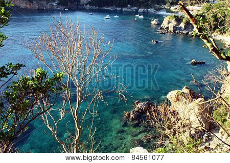 blue lagoon with clear water and vegetation