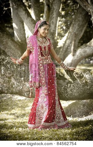 Young beautiful Hindu Indian bride in traditional gown outdoors in garden