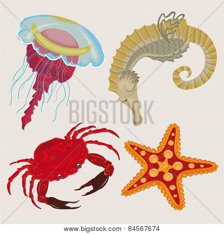marine life.sea creatures small.
