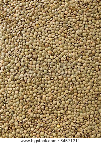 Lentils Background