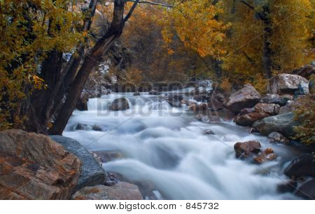 Mountain Stream At Fall
