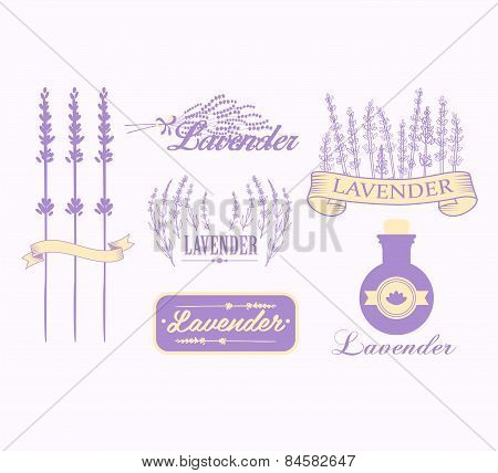 Vintage lavender background, aromatherapy and spa packaging design