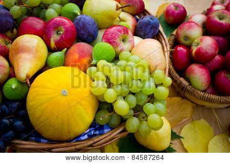 Fresh fruits in the basket