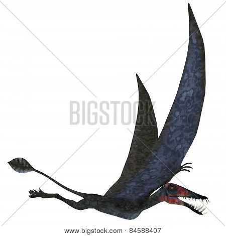 Dorygnathus Pterosaur Over White