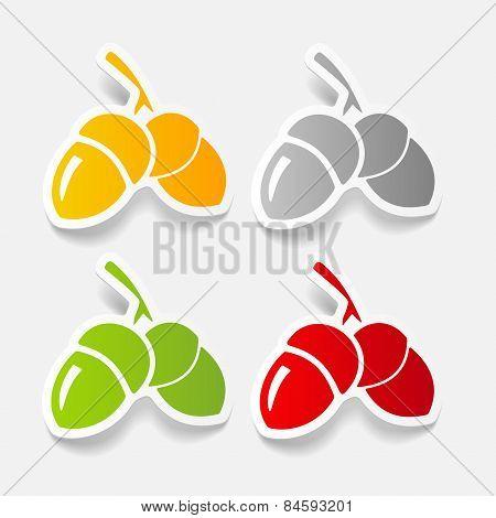 realistic design element. acorns
