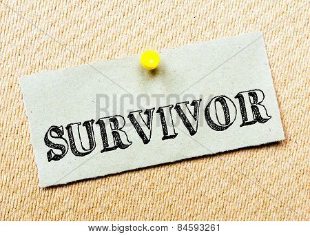 Recycled Paper Note Pinned On Cork Board.survivor Message. Concept Image