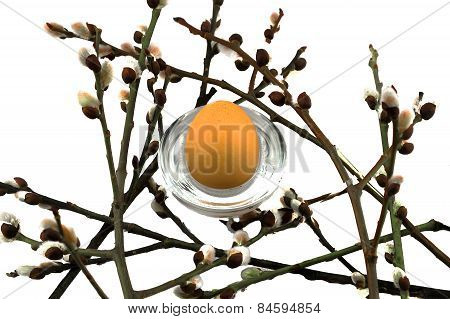 Easter willow and egg on a white background