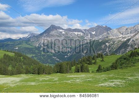 Summer Scene In The Bernese Oberland