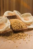 picture of home-made bread  - Whole wheat grains in wooden bowl with home made flat bread - JPG