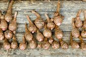 picture of taro corms  - Closeup Group of taro roots on table wooden background - JPG