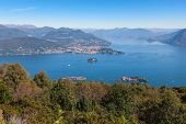 picture of lagos  - View of coastline of  Lago Maggiore - JPG
