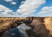 stock photo of boggy  - Irish peat Bog landscape in rural county Kerry - JPG