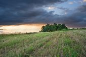 picture of storms  - Natural landscape with the storm overcast sky and lonely tree - JPG