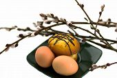 pic of willow  - eggs and cake on a plate and willow - JPG