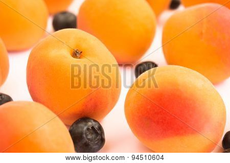 Apricots and Blueberries - Diagonal Pattern