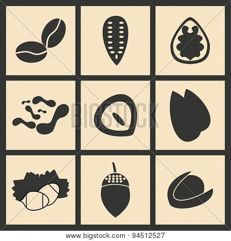 Flat in black and white concept mobile application nuts icons