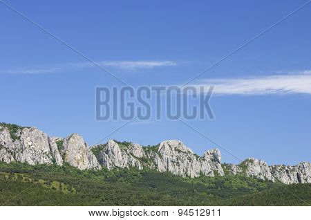 Forested Santo Domingo Mountains, Zaragoza Province, Aragon, Spain.