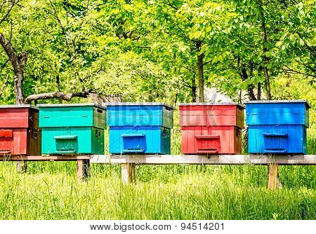 Colorful Beehives In A Row