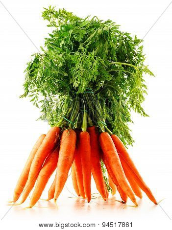 Fresh Carrots Bunch Isolated On White