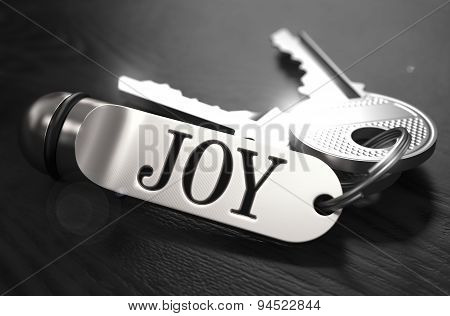 Joy Concept. Keys with Keyring.