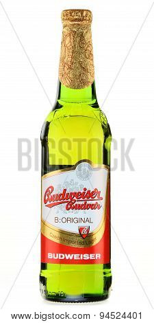 Bottle Of Budweiser Budvar Beer Isolated On White