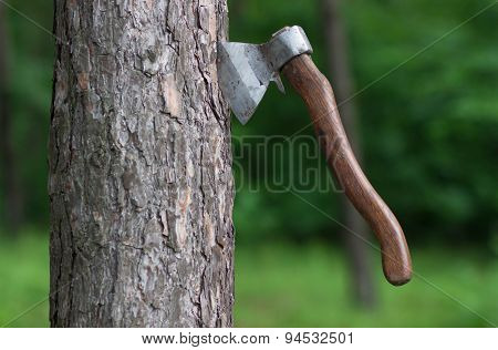 Axe In The Tree