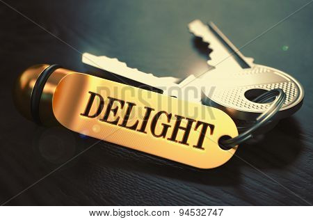 Delight Concept. Keys with Golden Keyring.