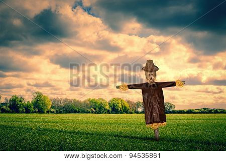 Scarecrow On A Green Field