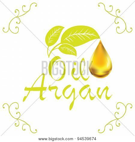 Oil Drop, Argan Oil Cosmetic Falling From Leef With Decoration Elements Isolated On White Background