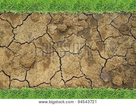 Dry soil with green grass border