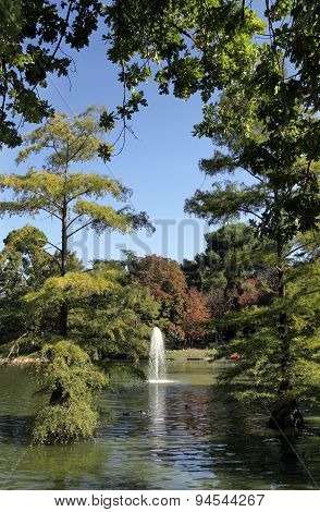 Pond In The Retiro Park, Madrid