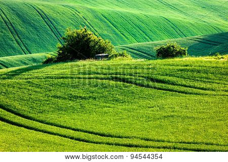 European rural wallpaper - Moravian rolling landscape, Moravia, Czech Republic