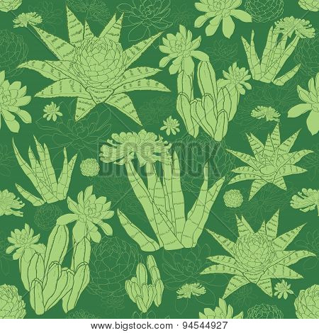 Vector Green Lineart Succulents Seamless Pattern