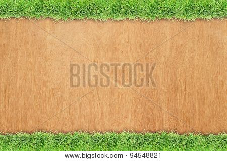 Green grass border on wood background