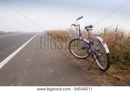 bike road in nature