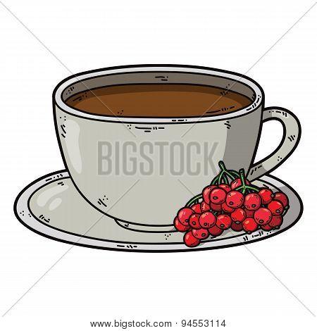 Tea cup viburnum